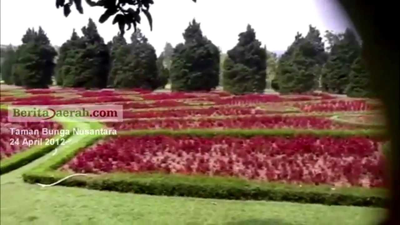 Taman Bunga Nusantara Puncak Jawa Barat
