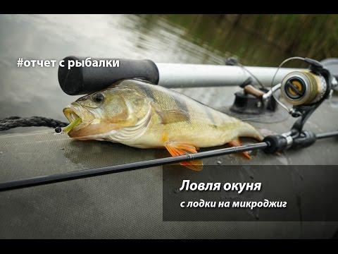 Ловля окуня с лодки на микроджиг - YouTube