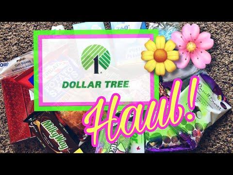 DOLLAR TREE HAUL!   March 19, 2019   Traci B