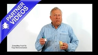 GreenWay Fruit Fly Trap Demonstration
