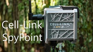 SpyPoint Cell-Link Review (SEE…