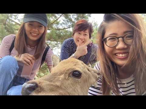 KANSAI, Japan Vlog 2017 (I) - Nara, Himeiji, Kobe, Osaka