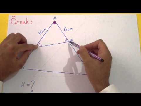 Benzerlik 1 Şenol Hoca Matematik