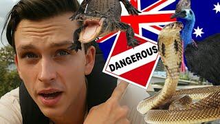 10 REASONS NOT TO VISIT AUSTRALIA ! ( My Reaction )