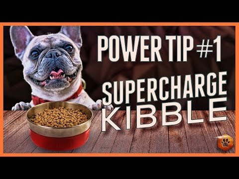 Supercharge food rewards - Power tip #1: use empowered kibble to train