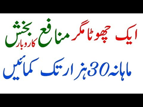 How to start a Low Investment Business In Pakistan and Courier India