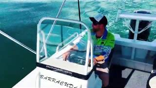 Bluefin 540 Barracuda SC