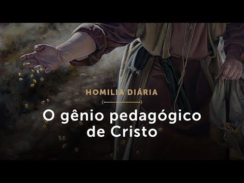 Homilia Diária | O Gênio Pedagógico De Cristo (Quarta-feira Da 16.ª Semana Do Tempo Comum)