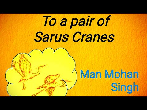 To a Pair of Sarus Cranes by Man Mohan Singh