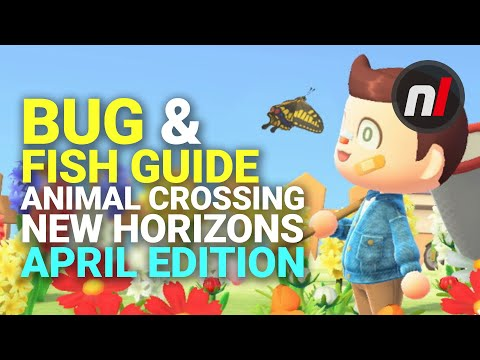 Bug & Fish Guide - April Edition | Animal Crossing: New Horizons