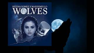 Baixar Selena Gomez - Wolves [ Lyrics Video ]