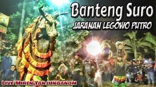 Full Ndadi...Banteng Maheso Suro dan Singo Kumbang Jaranan Legowo Putro Live Miren Tanjunganom