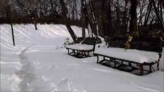 一つ森公園で雪中ウォーキング 2018. 1 .7