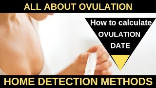 How to Calculate Ovulation Date | Home detection methods | Chaitanya IVF