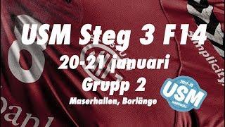 USM F14 3:2: Eskilstuna Guif - Huddinge HK
