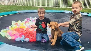 Earl the Funny Puppy Vs. Water Balloons!