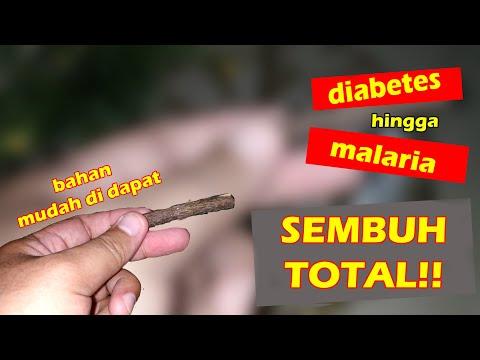 cara-mengobati-kencing-manis-hingga-malaria-dengan-cepat-dan-alami.-tips-kesehatan-#8