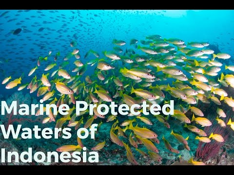 Protected Waters of Indonesia
