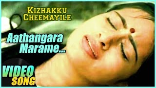 aathangara marame video song kizhakku cheemayile tamil movie vijayakumar radhika ar rahman