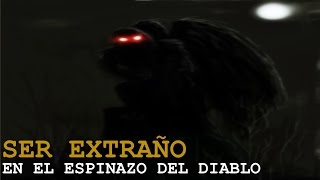 SER EXTRAÑO EN EL ESPINAZO DEL DIABLO (Historias De Terror)