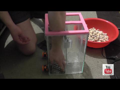 Как работает внешний фильтр для аквариума видео