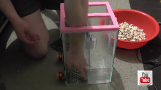 Как сделать внешний фильтр для аквариума своими руками