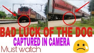 Live train accident with a dog😫... [ CAPTURED BY MISTAKE ] [ must watch if you love dogs]