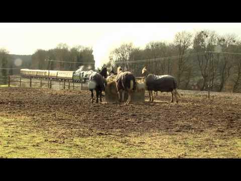 Princess Elizabeth & Clan Line In Surrey