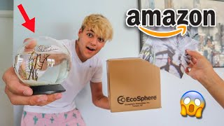BUYING the WORLDS smallest BIOSPHERE AQUARIUM!!! *shrimp inside*