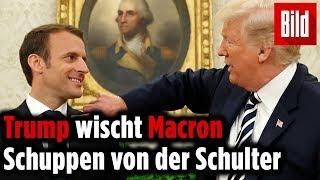 Trump demütigt Macron beim Staatsbesuch