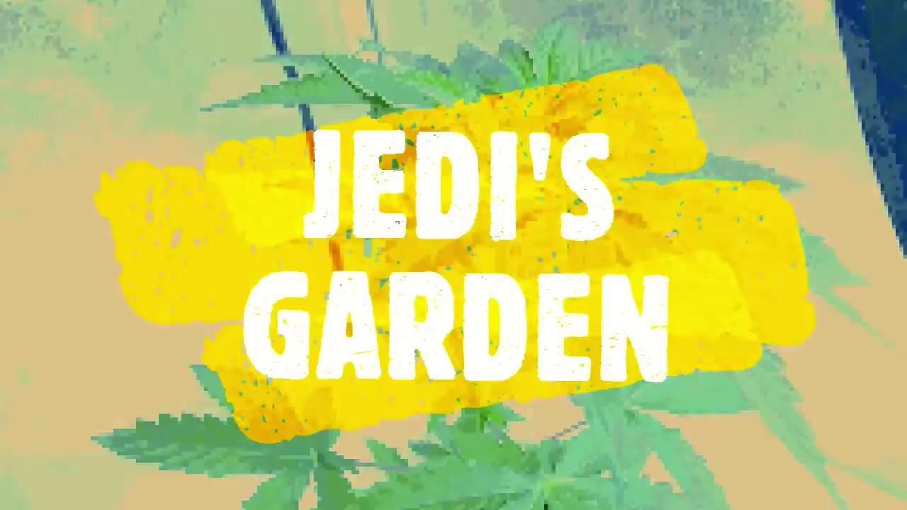 jedis garden outdoor special - Jedis Garden