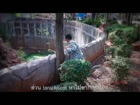 [Full MV]นักคณิตศาสตร์ By M.5/4