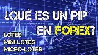Qué son los Pips y los Lotes en Forex (mini lotes y micro lotes) | Winpips