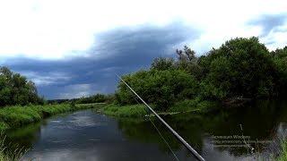 Рыбалка на жука и кузнечика.Рыбалка на спиннинг.