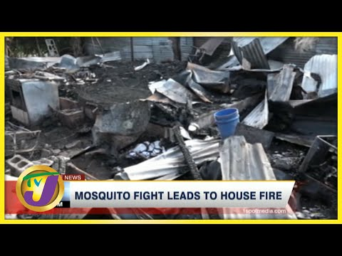 Jamaican Family Fight with Mosquitoes Leads to House Fire   TVJ News - July 8 2021