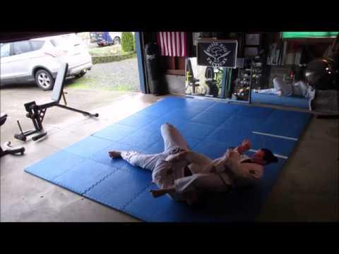 gracie combatives techniques