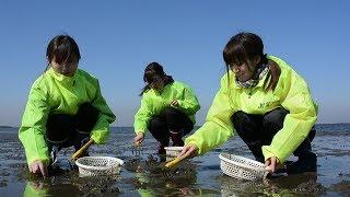 潮干狩りシーズンを前にした2月20日、千葉県富津市の富津海岸でアサ...