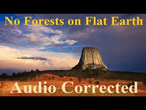 Audio Corrected - No Forests on Flat Earth - by Людин Рɣси ✅