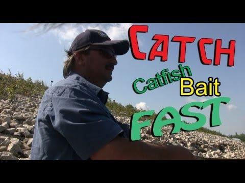 How To Catch Skipjack Herring For Catfish Bait