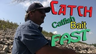 How to catch Skipjack Herring for Catfish bait