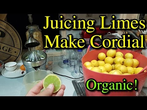 Juicing a Ton of Limes to Make Cordial Best Citrus Juicer VLog #5