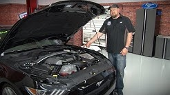 2015-2019 Mustang Maximum Motorsports Caster Camber Plates Installation