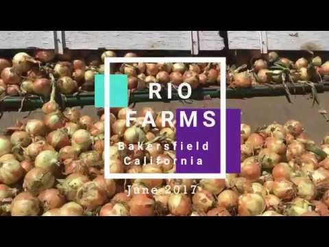 Rio Farms, June 22 Bakersfield, CA