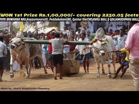 """2018 MAHANANDI """"SENIORS"""" 1st Prize Rs.1,00,000/- WON by THOTA SRINIVASA RAO,Koppuravuru - 2250.05 FT"""