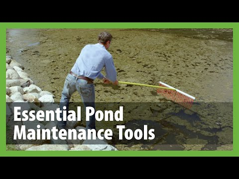 Pond Rakes | Weed Rake for Ponds | The