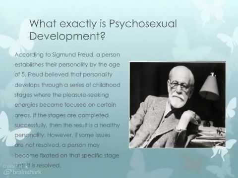 sigmund freuds psychosexual development theory Psychosexual development: freudian concept tomy philip introduction the theory of psychosexual development of sigmund freud's clinical research with.