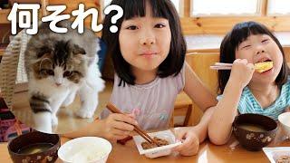 もふ猫に初めて納豆をあげてみたら…