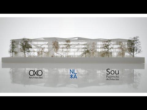 BEM - Ecole Polytechnique (Sou Fujimoto - OXO architects - NL*A Paris)