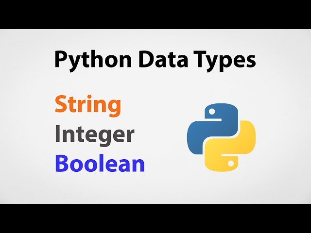 Most Common Data Types in Python | Python for Beginners