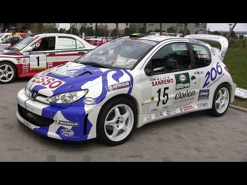 1999 Peugeot 206 WRC Rally Sanremo G.Panizzi Specifications Replica
